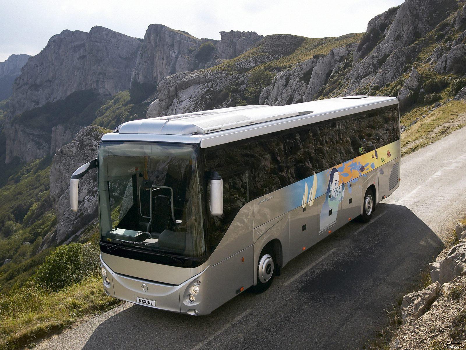 автобусные туры к морю из волгограда